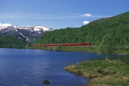 Trains Bodo to Trondheim