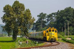 South Korea by train