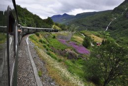 Flam by train