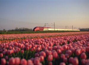Thalys - High speed train Europe