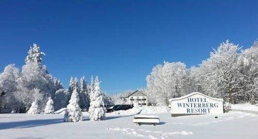 Vakantie Winterberg   trein en hotel   Hotel Winterberg Resort