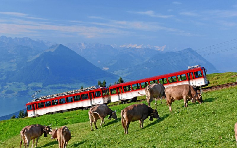 SBB / CFF / FFS - Mountain train Switzerland