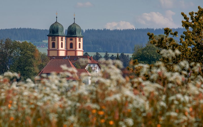 Black Forest by train | Church in Black Forest