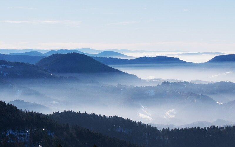 Black Forest by train | Landscape birds eye view