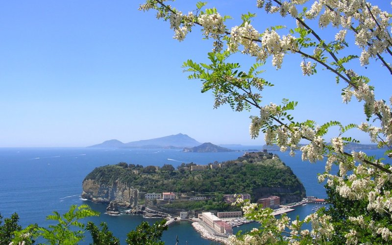 Trains to & from Naples | View from the top