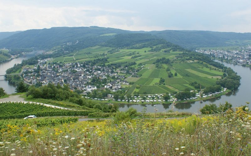 Rhine and Moselle by train | Moselle river