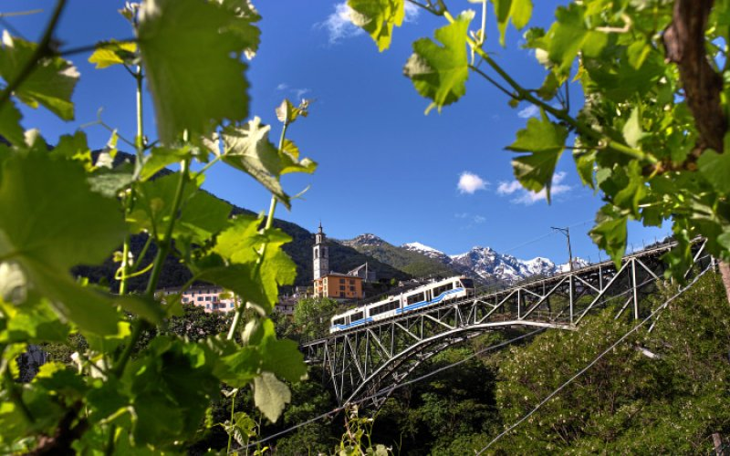 Trains in Switzerland | Swiss Travel Pass | Train running over a viaduct