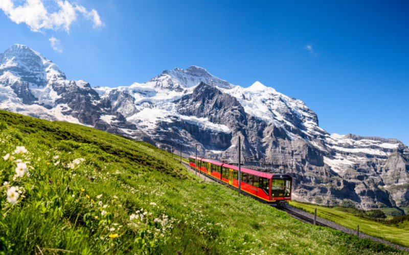 Trains in Switzerland | Swiss Travel Pass | Train in the Alpine field