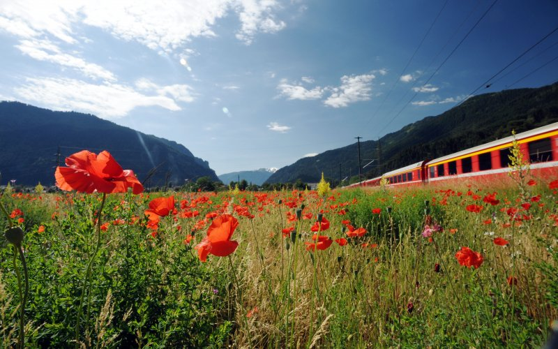 Trains in Switzerland - Bernina Express