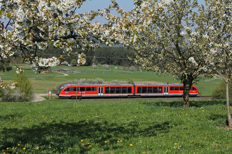 Trains [from to Düsseldorf Hbf (Central station) - Deutsche Bahn - Regional / local trains