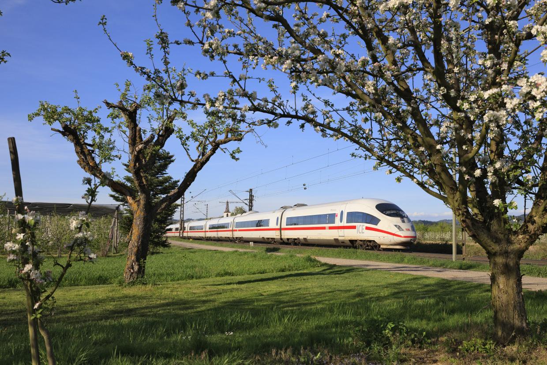 Trein Basel - Internationale treintickets