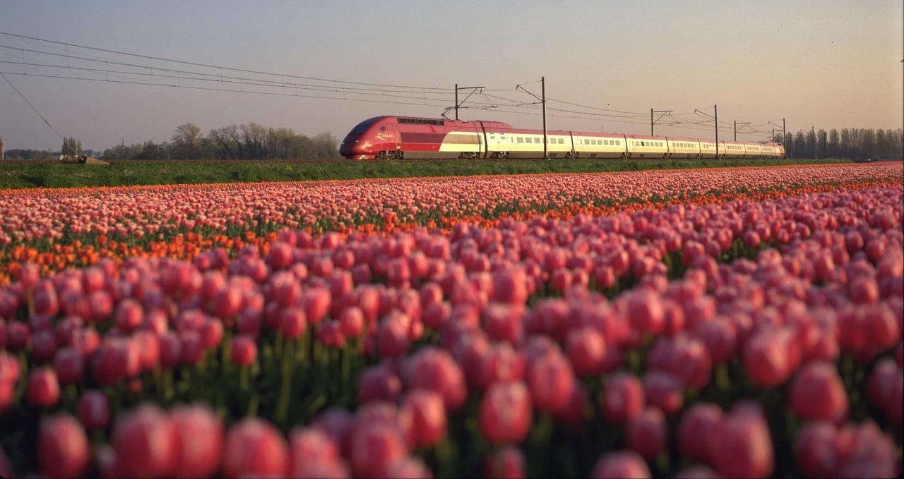 Thalys - Internationale treintickets